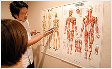 痛みの原因は関節の位置異常